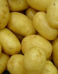 Aardappelen. Bron en copyright: www.schoolplaten.com