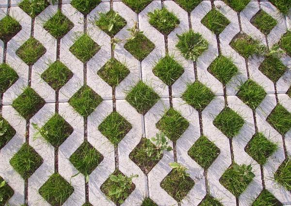 Permeable pavement: gras tussen stoeptegels. Foto: I. Public Domain.