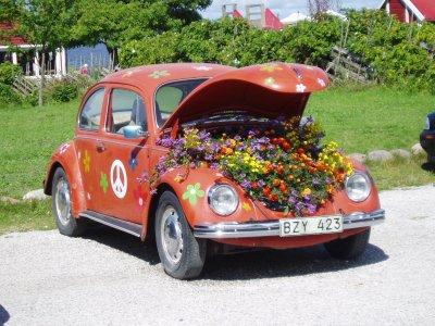 VW kever met bloemen. Gefotografeerd op Gotland, Zweden. Foto: Dan Ander; public domain, bron: stock.xchng, http://www.sxc.hu/photo/360520.