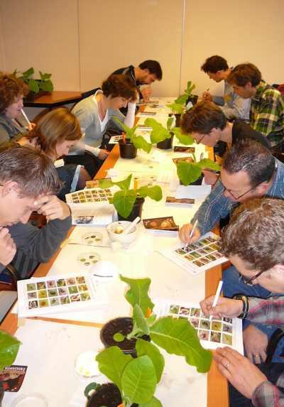 Practicumproefje tijdens NIBI-dag. Foto: Jan-Kees Goud.